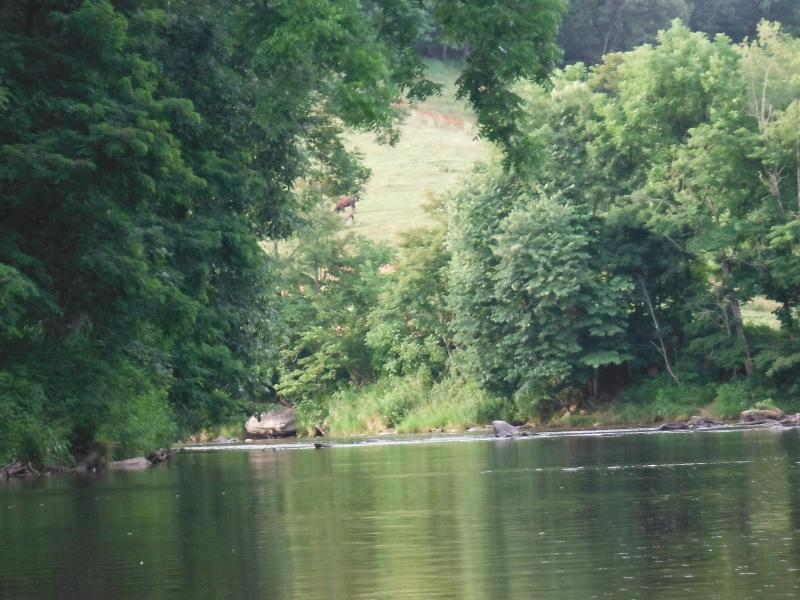 The Pigeon River runs right in front of the entrance of the property.  Great for fishing!
