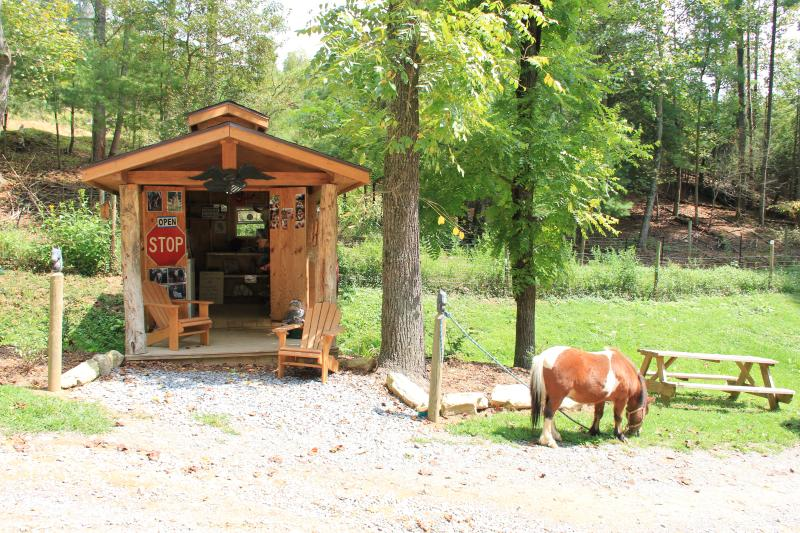 Visit the BC Outpost for bison meat, farm fresh eggs & cool souvenirs.