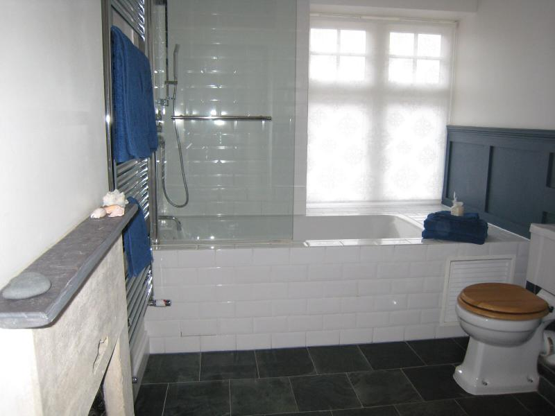 Family bathroom with shower and large bathtub
