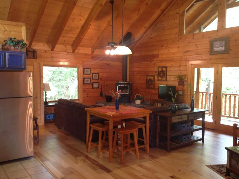 Large living space with wood burning stove