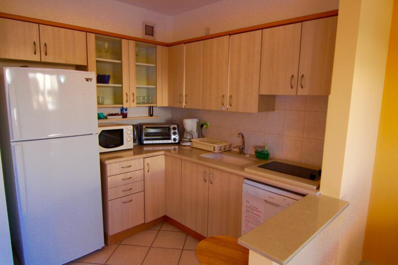 Kitchen in apartment in Herzliya