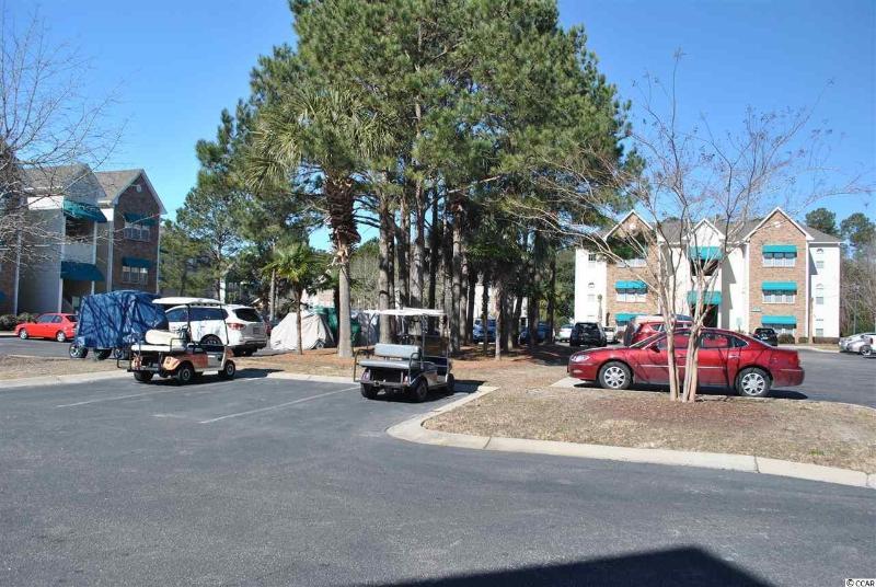 golf cart community- plenty of parking!