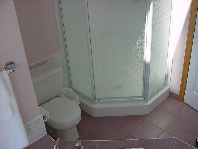 shower in main 4 piece bath