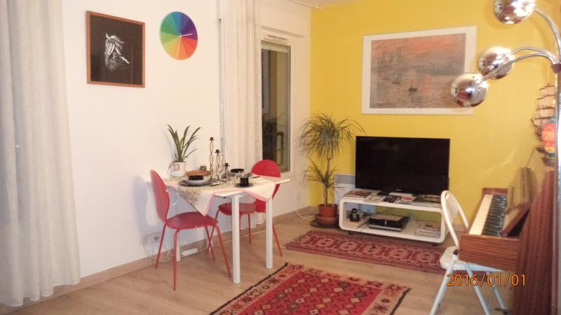 CENTRAL NEW APARTMENT  NEAR BIG PARK QUIET PIANO GARDEN VUE  VERY SAFE AIREA, holiday rental in Les Lilas