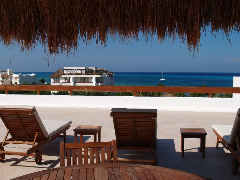 Palapas & Lounge Chairs On Sundeck. Also Has Shower, Washroom and Refrigerator & Great View.