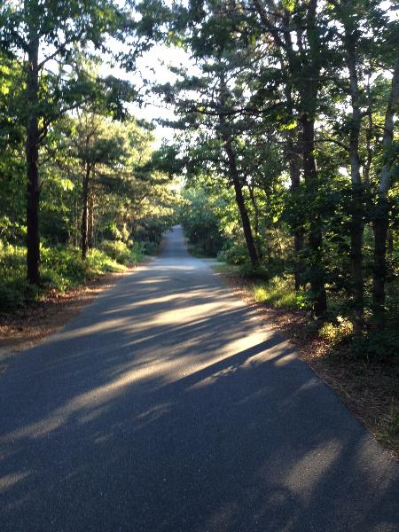 Imagine driving down this private road to your home, with access to Long Point Beach!