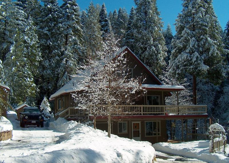 Mini Resort Cabin on 6 Acres close to Kirkwook, holiday rental in Pollock Pines