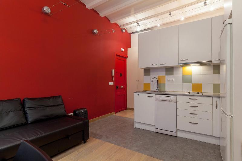 Bonito apartamento cerca de Sants, vacation rental in Barcelona