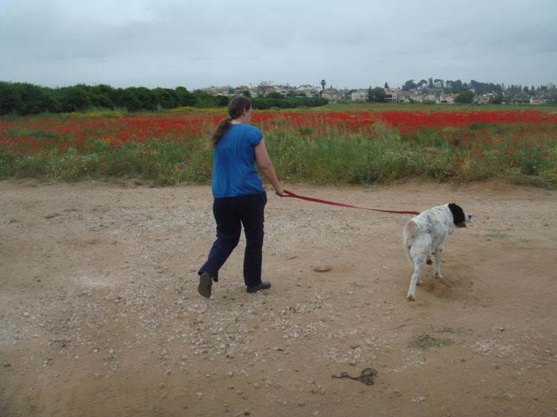 Our walking the dog, close to the farm