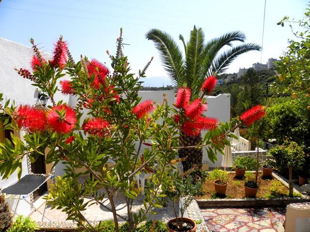villa italiana, casa vacanza a Agios Nikolaos