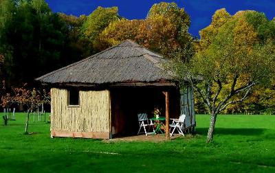 La cabane en paille, holiday rental in Bains-les-Bains