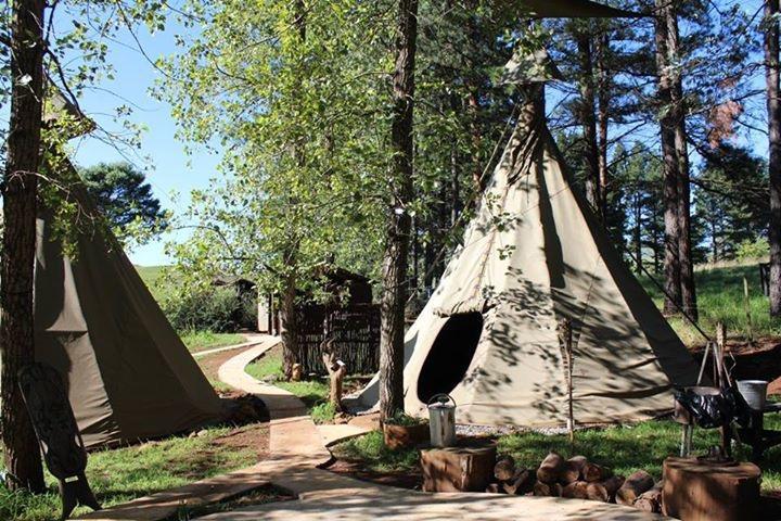 Little Wing Teepee Camp, holiday rental in Drakensberg Region