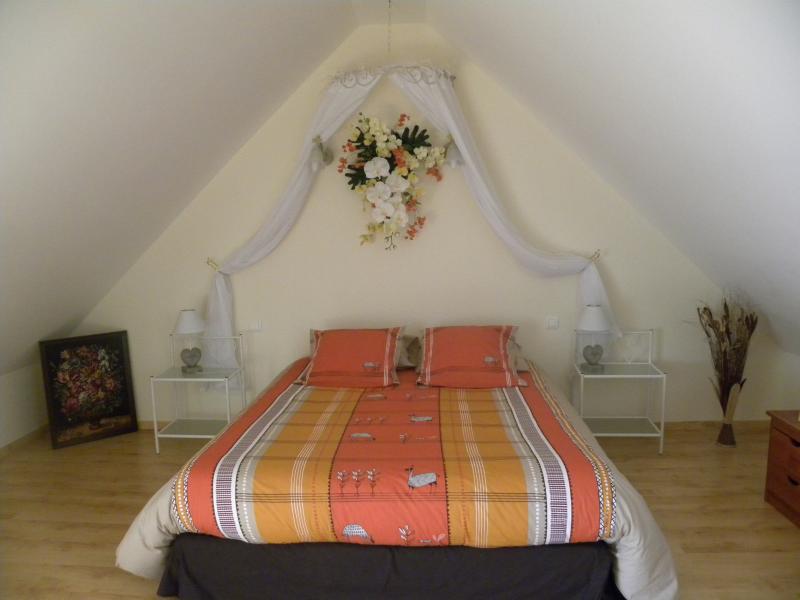 Chambre d'hôtes La Quèrière - Les Orchidées -, holiday rental in Mur-de-Sologne