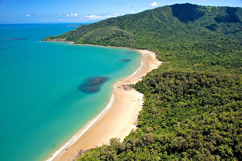 Where the rainforest meets the sea...