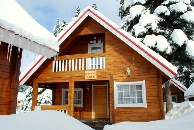 Alpine Chalet Hunters, vacation rental in Borovets