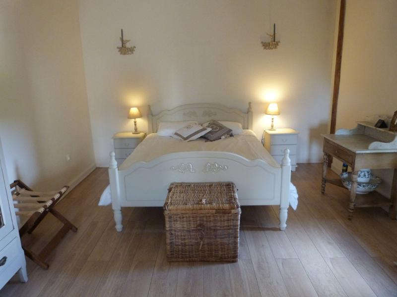 Tastefully Decorated, Comfortable Vineyard Cottage, vacation rental in Cours-De-Monsegur