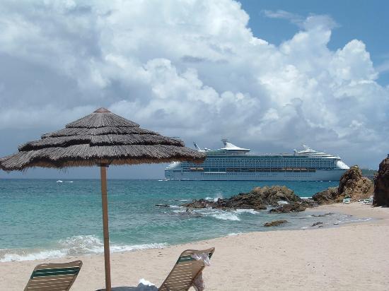 Cruise Ships
