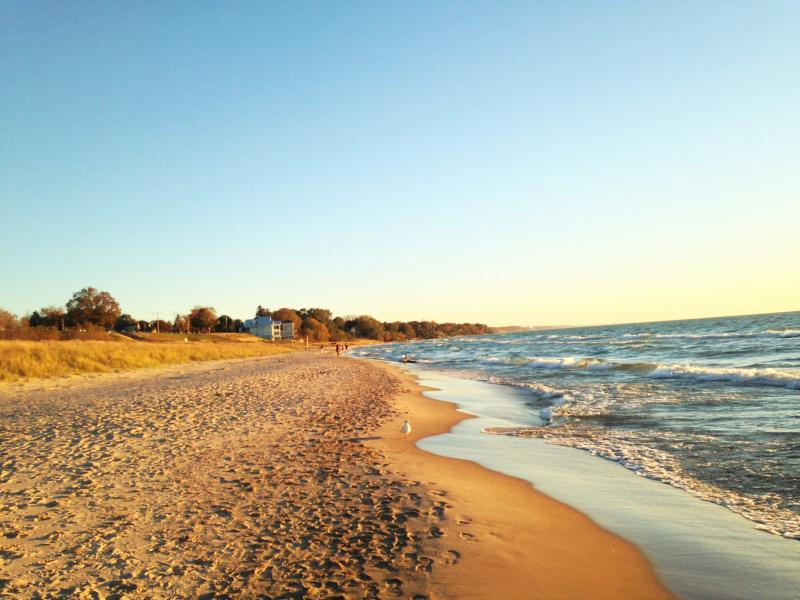 Newcome beach is located less than a mile from the Daydreamer cottage!