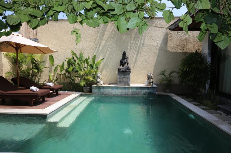 Executive Suite Villa - Pool