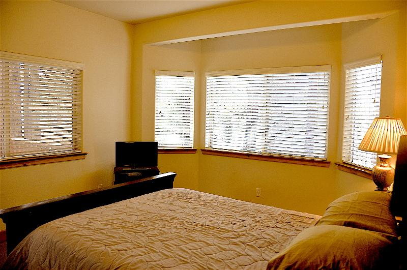 Suite 5 include a queen bed and  is full of wonderful view of growing pine trees