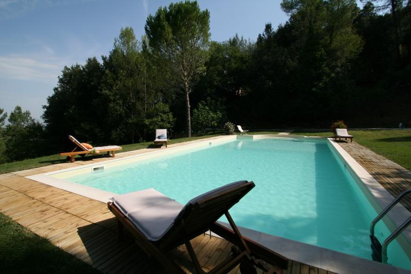 The pool in the sun