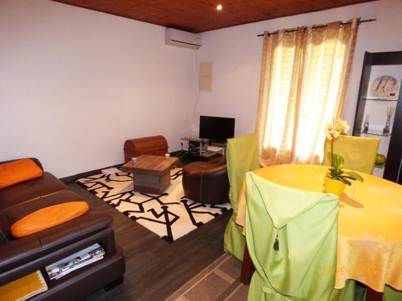 Salon avec TV satellite et accès internet trés confortable
