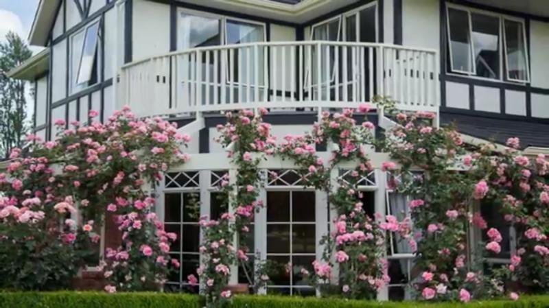 Cambridge Rose House, location de vacances à Matamata