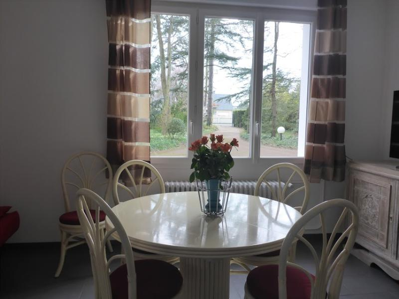 accommodation rental Amboise central loire valley, vacation rental in Amboise