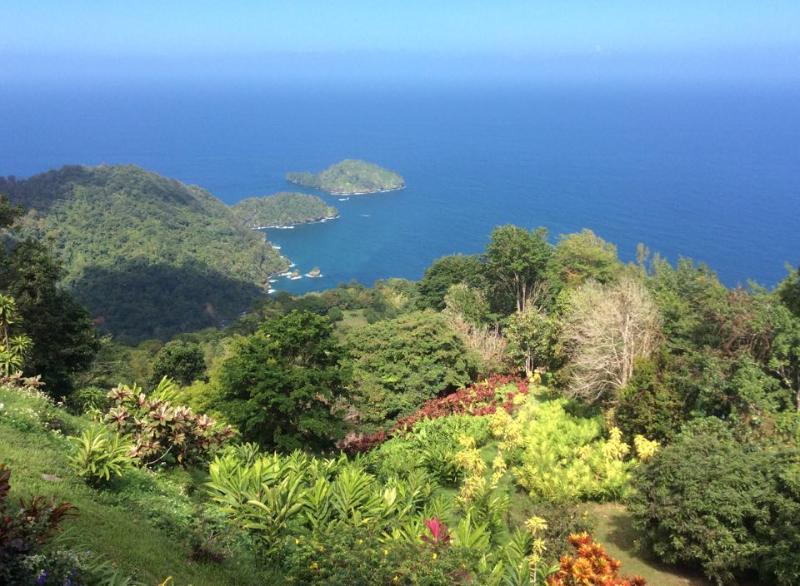 Overlooking Saut d'eau island