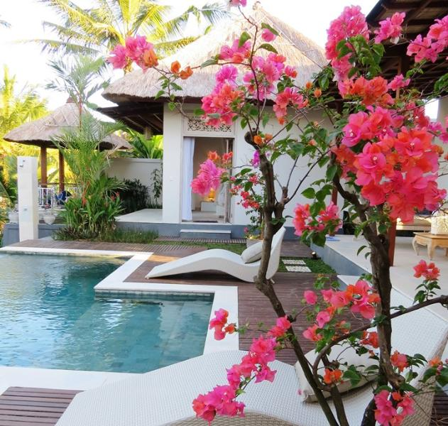 Villa Kolibri 3 BR Luxury with Private Pool, vakantiewoning in Ubud