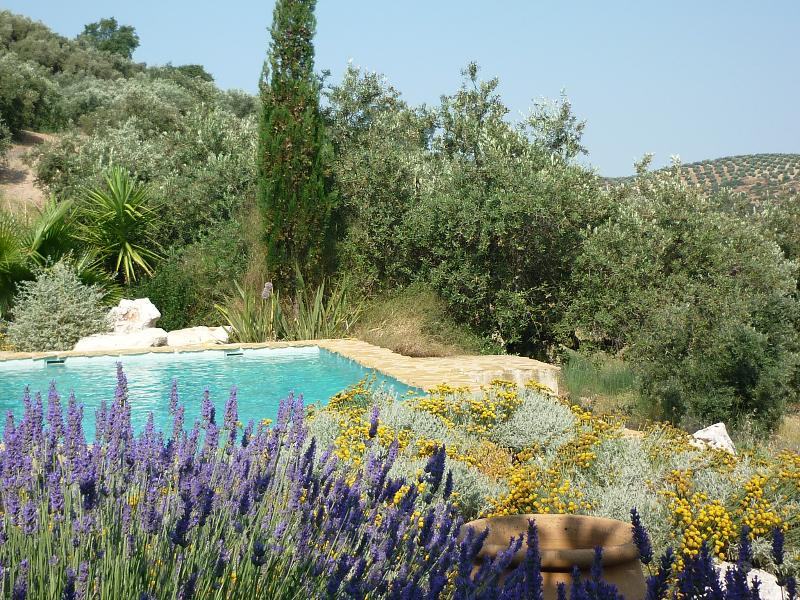 The pool is set in gardens overlooking the valley and olive groves