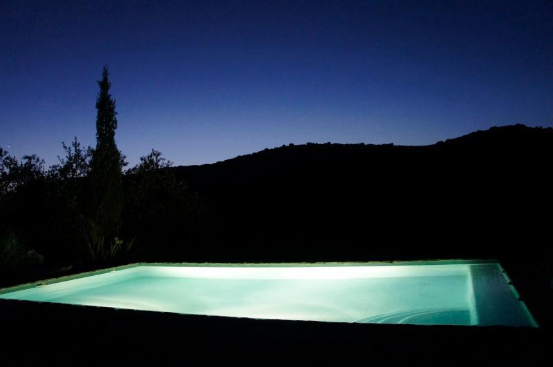 Cortijo las Rosas' pool by night
