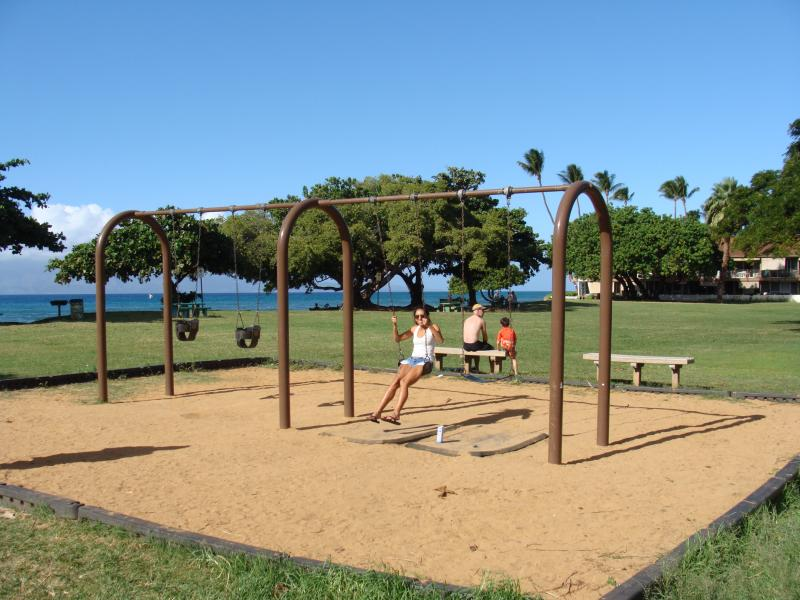 Swings for children and adults in Park in front.