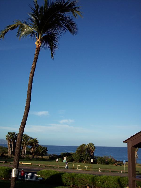 Another Lanai View