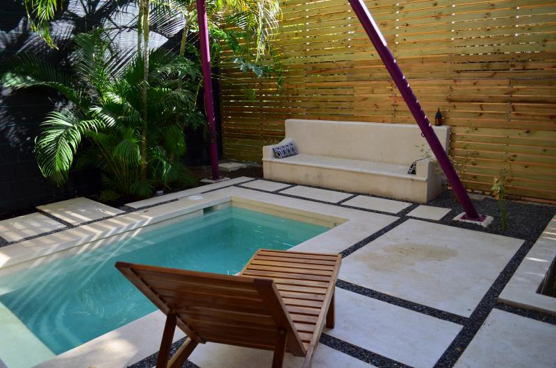 Brand new pool - complete with a hammock, a lounger and a concrete couch for relaxing!