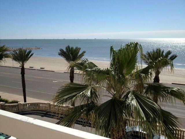 We're just a few blocks from our World Famous Seawall!  All in Walking Distance