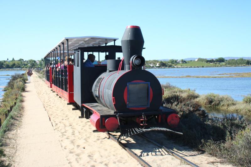 train to beach at pedras del rei