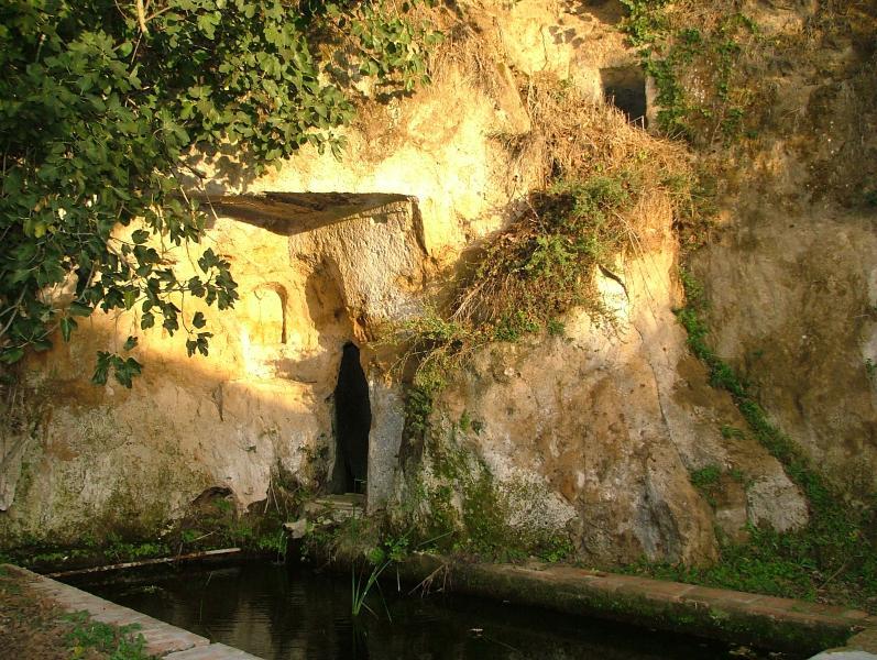 Etruscan ruins inside the farmhouse!