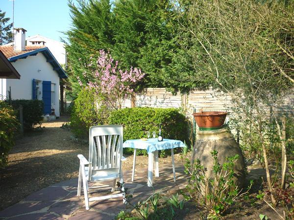 Jardin avec ses oliviers et sa jarre à huile authentique plus que centenaire.