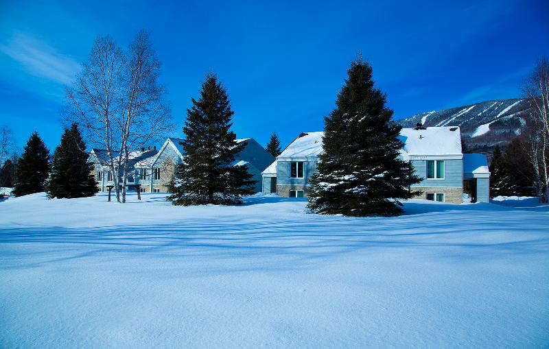Our 5 bedroom villa with a amazing view of Mont-Sainte-Anne.