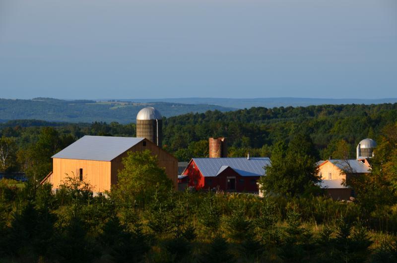 Amish Farm next door