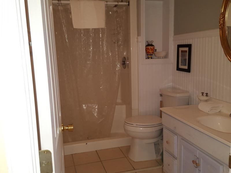 Guest full bathroom on entrance level