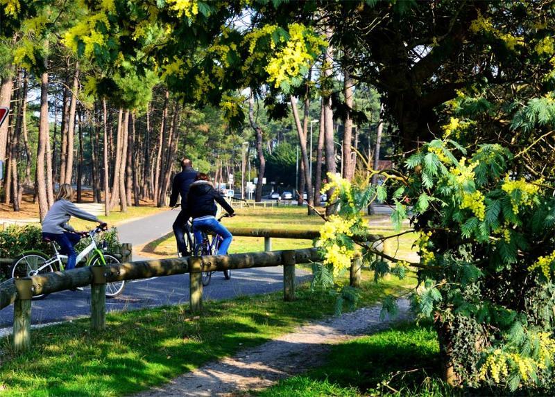 150 km de caminho de bicicleta