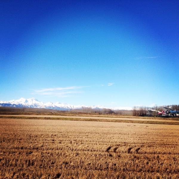 Le Alpi innevate sullo sfondo Snow capped Alpi mountains in the background