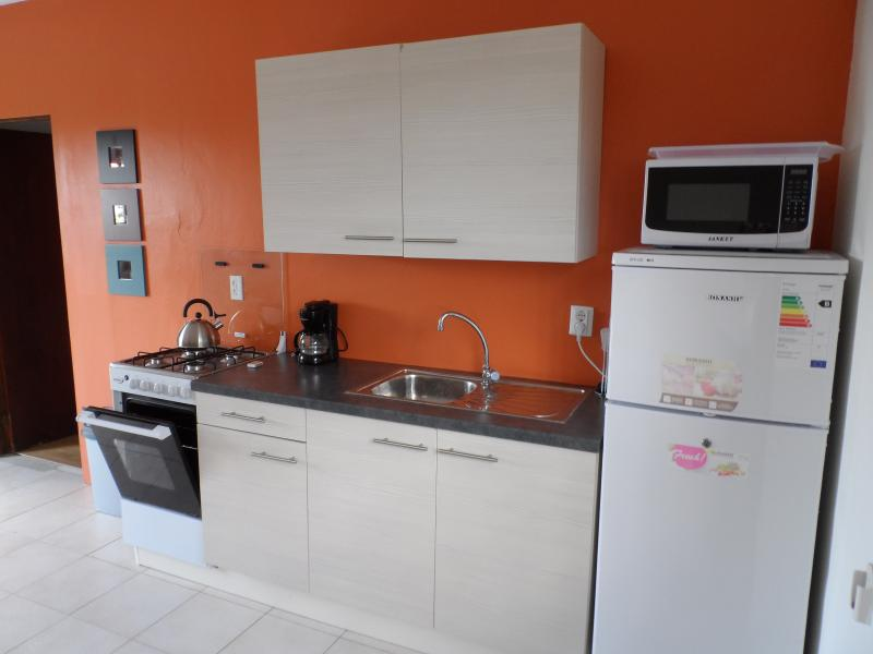 full equipped kitchen with microwave , coffee maker, oven, fridge, freezer