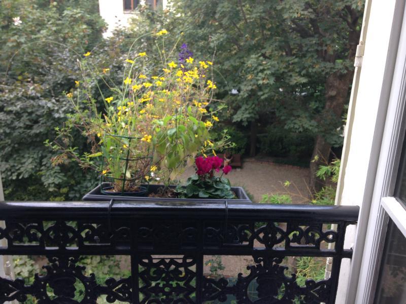 garden view bedroom