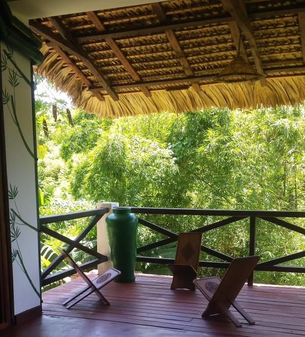 La terrasse dans la forêt de bambou.