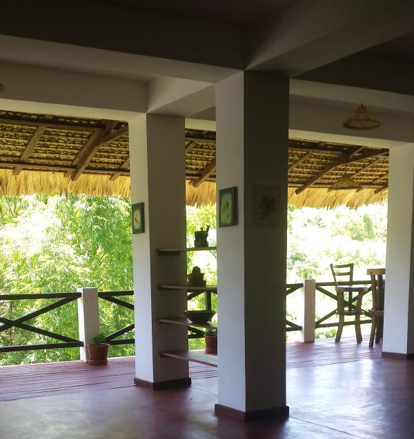 Une autre partie de la terrasse.