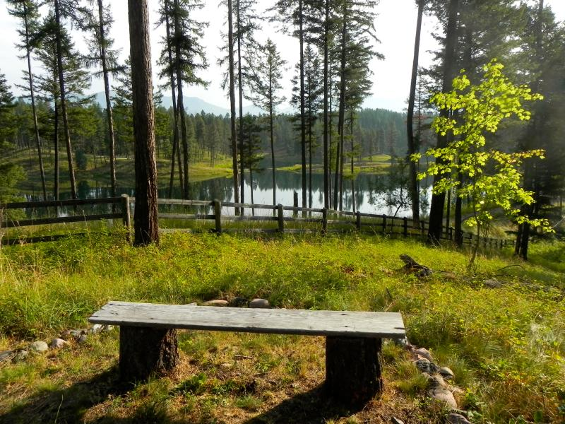 PEACEFUL SIT SPOTS  dot the property to encourage time to bask in the beauty