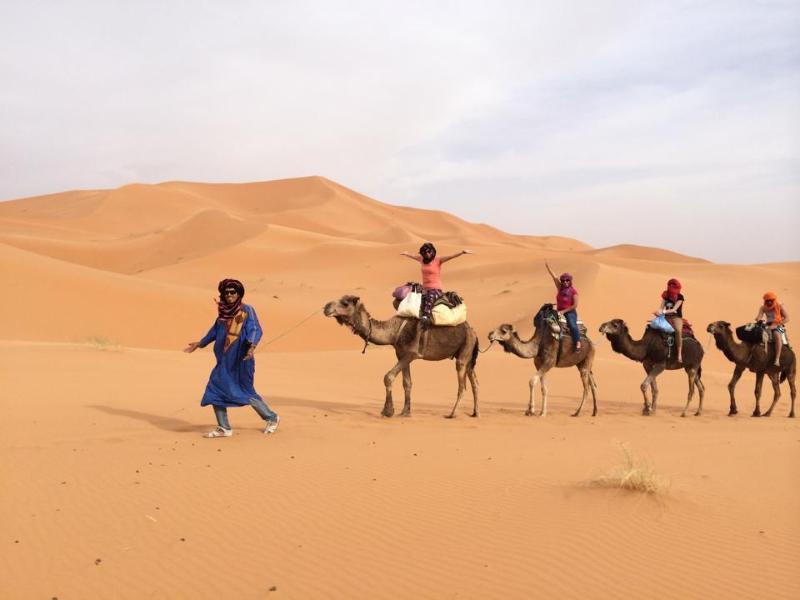 SAHARA CAMEL TOUR, organizar cameltrekking,